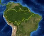 Amazon_rainforest[1]